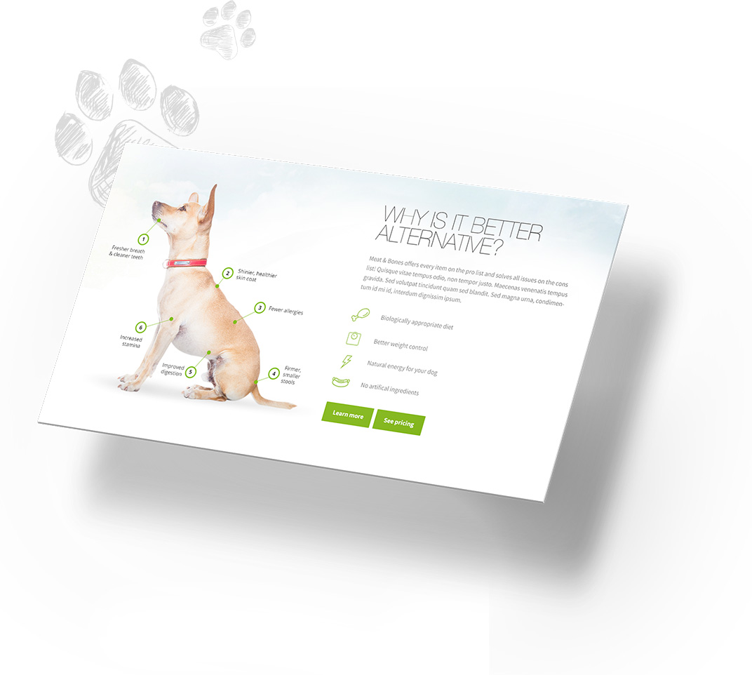 Our solution of dog food service website